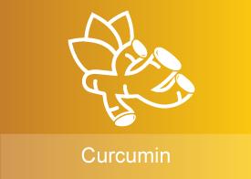 Curcumin IV